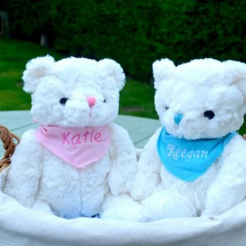 personalised small teddy
